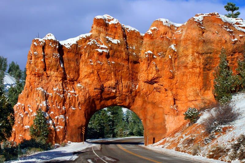 Forêt nationale de Dixie de tunnel de roche photographie stock