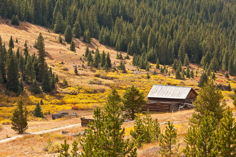 Forêt nationale de fleuve blanc dans le Colorado image stock