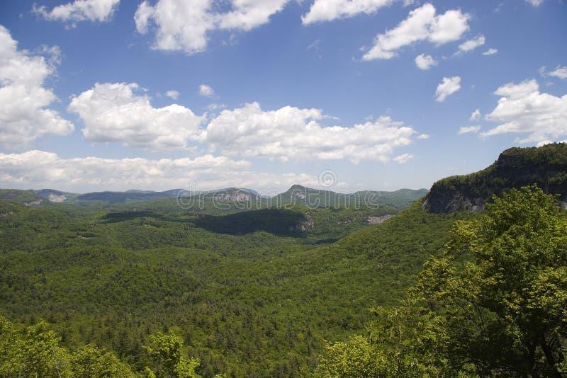 Forêt nationale de Nantahala image libre de droits