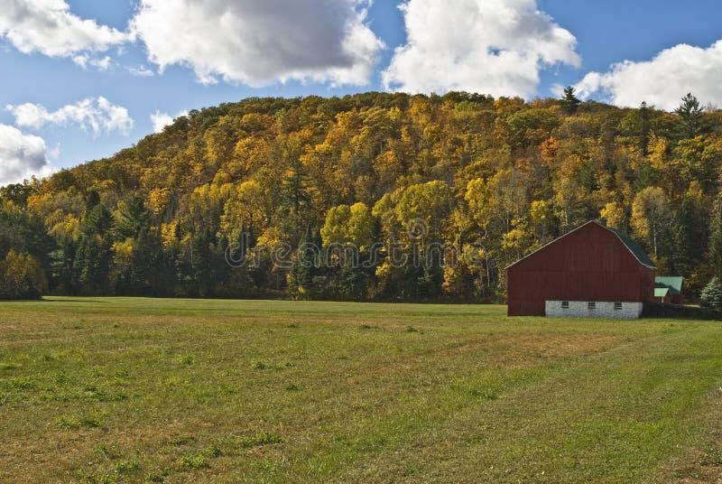 Forêt rouge de grange photo stock