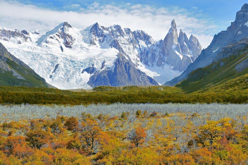 Forêt sèche par la montagne de Cerro Torre images stock