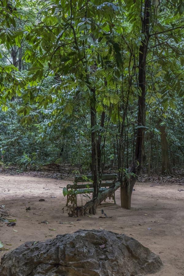 Forêt tropicale chez Tiger Cave Temple, Thaïlande images stock