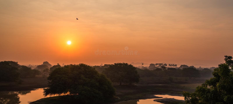 Forêt tropicale de Myanmar Bagan sur le coucher du soleil La Birmanie Asie Pagoda de Bouddha images libres de droits