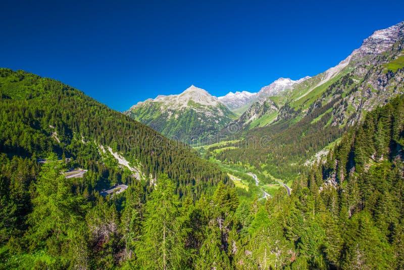 Forêt verte et Alpes suisses sur le dessus de Malojapass image stock