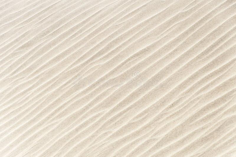 Fora da textura branca da areia na praia em Omã imagens de stock royalty free