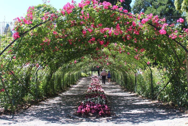 Fora do túnel da flor fotografia de stock royalty free