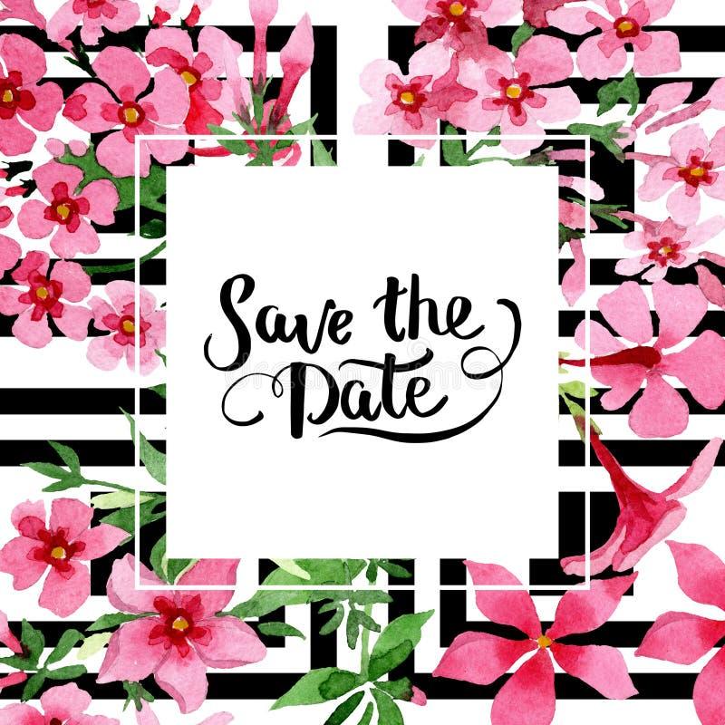Foral botanische Blume der Rosaflammenblume Aquarellhintergrund-Illustrationssatz Feldgrenzverzierungsquadrat stock abbildung