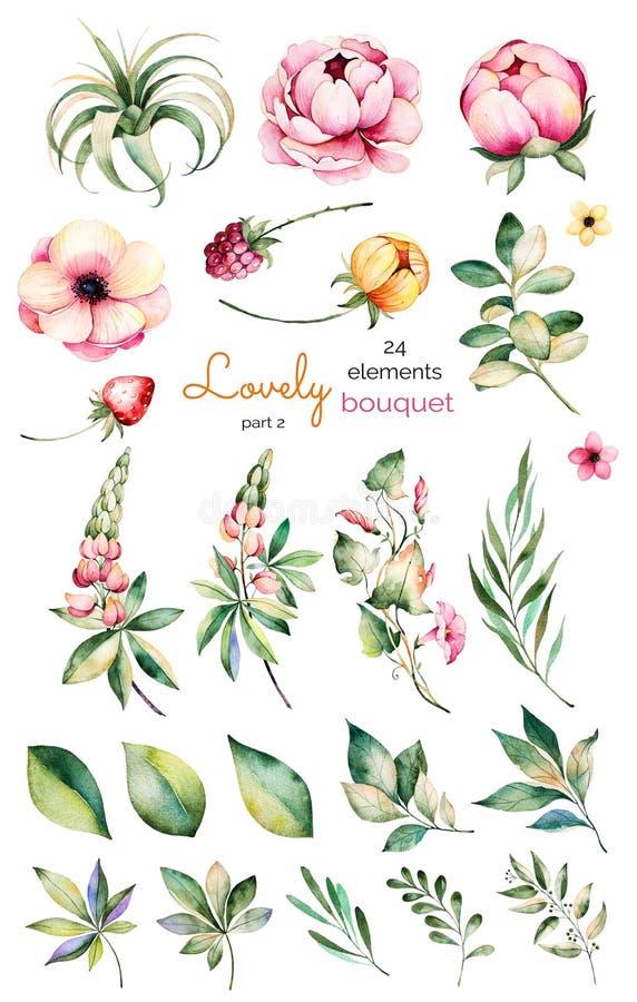 Foral samling med blomman, pioner, sidor, filialer, lupin, luftväxten, fältvindan, jordgubben och mer royaltyfri illustrationer