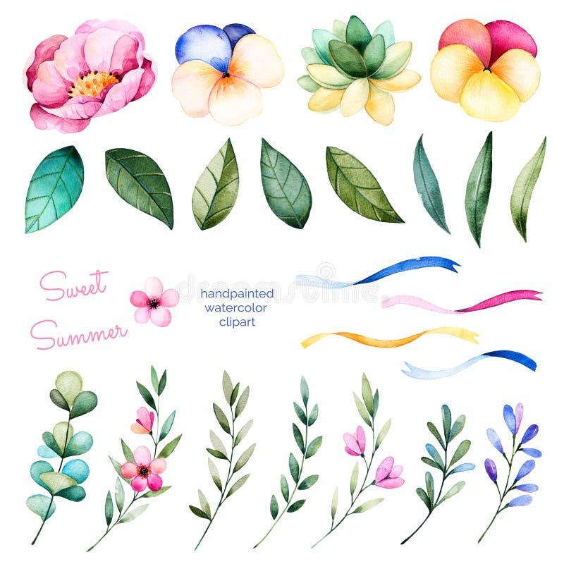 Foral samling med blommor, pionen, sidor, filialer, den suckulenta växten, penséblommor, band och mer vektor illustrationer