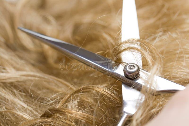 Forbici che tagliano capelli biondi fotografia stock