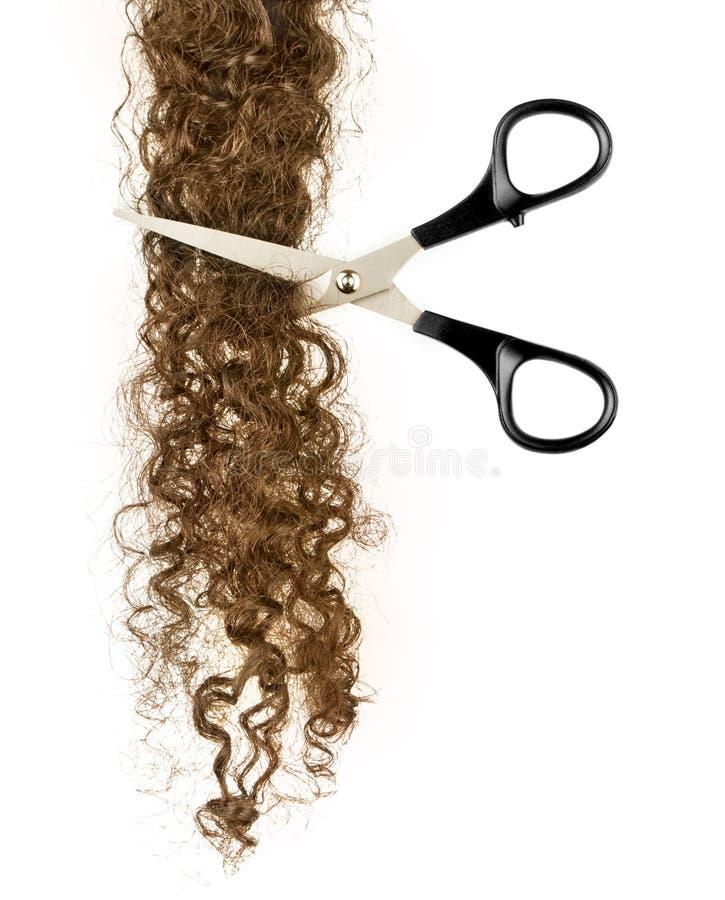Forbici e serratura di capelli immagine stock libera da diritti
