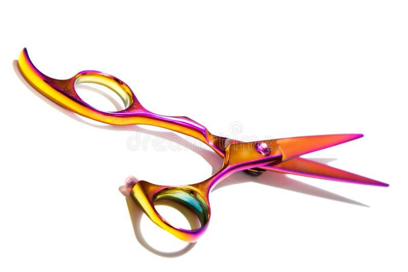 Forbici professionali di Haircutting fotografie stock libere da diritti