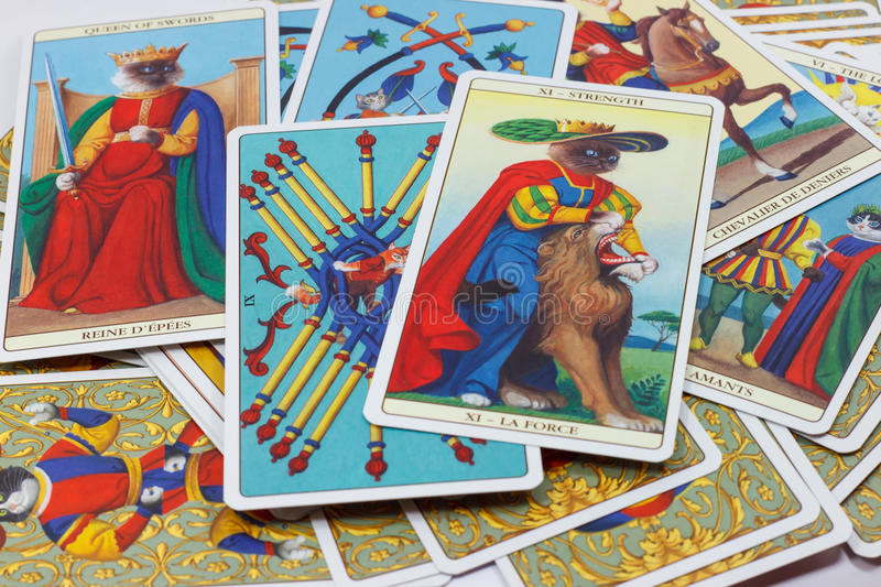 Force, carte de tarot sur le fond blanc images stock