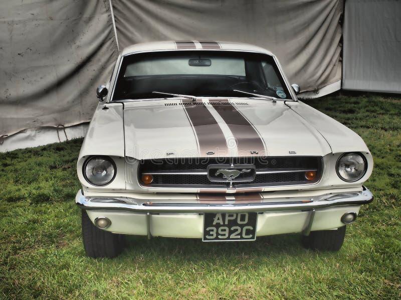 Ford Mustang -速度和复兴的古德伍德节日 库存图片