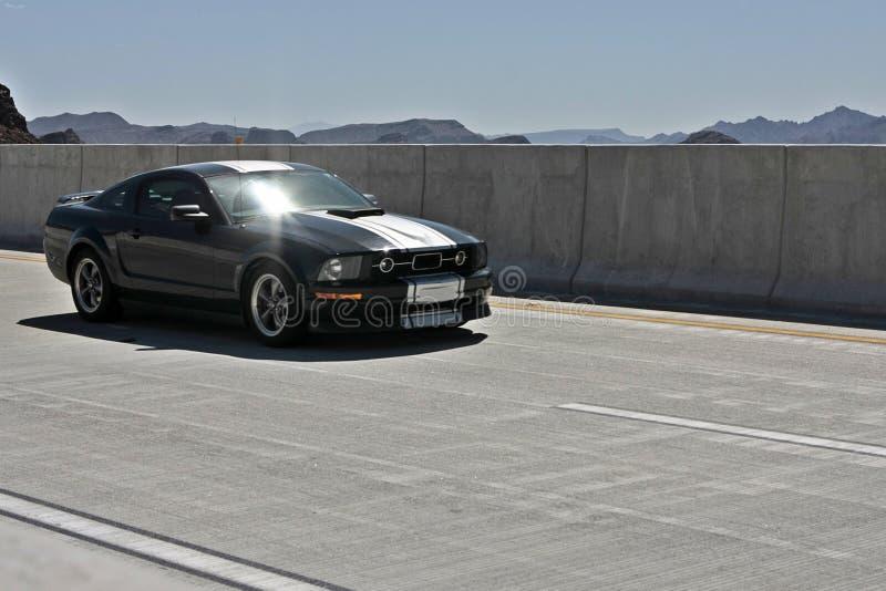 Ford Mustang stockfotografie