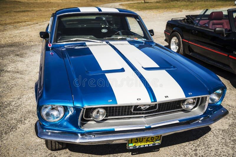 Ford Mustang royalty-vrije stock afbeeldingen