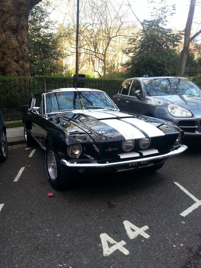 Ford Mustang fotografie stock libere da diritti