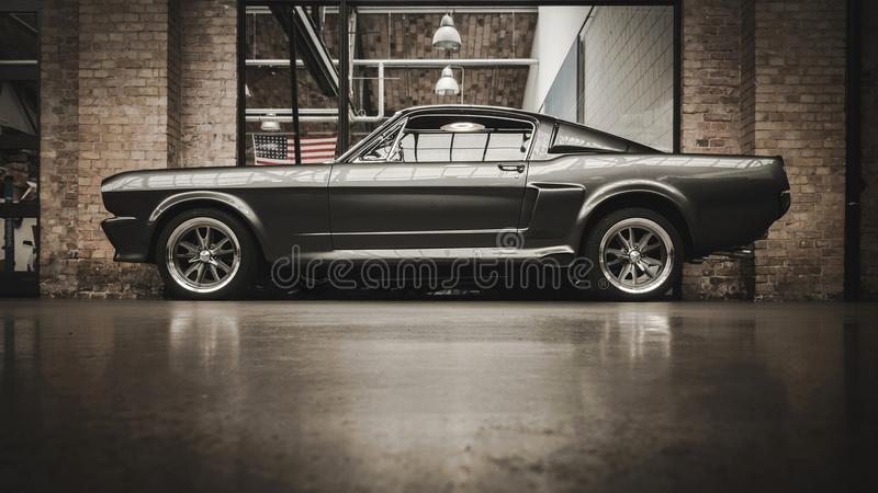 Ford Mustang GT 500 images stock