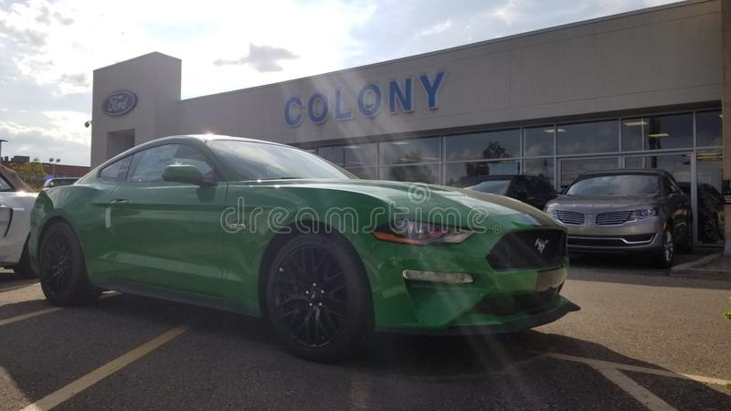 2019 Ford Mustang GT stock afbeelding