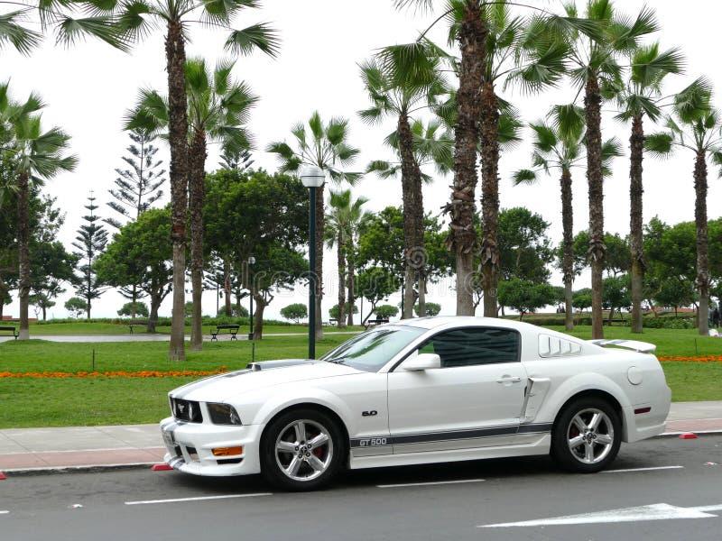 Ford Mustang GT500 5 0 parcheggiato in Miraflores, Lima immagini stock libere da diritti