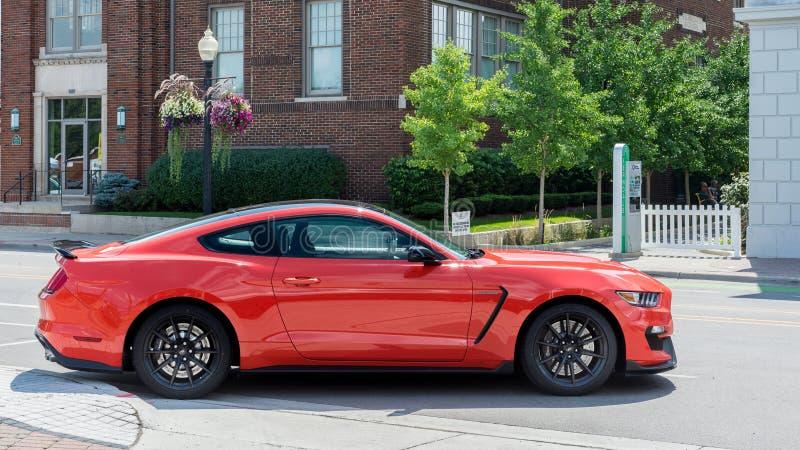 Ford Mustang 2016 GT 350, Woodward drömkryssning, MI arkivbild