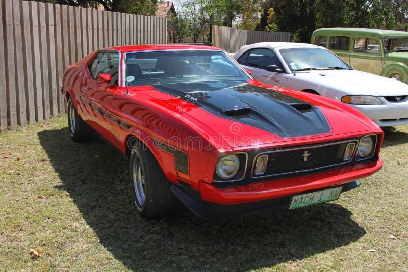 Ford Mustang Mach 1 royaltyfri foto