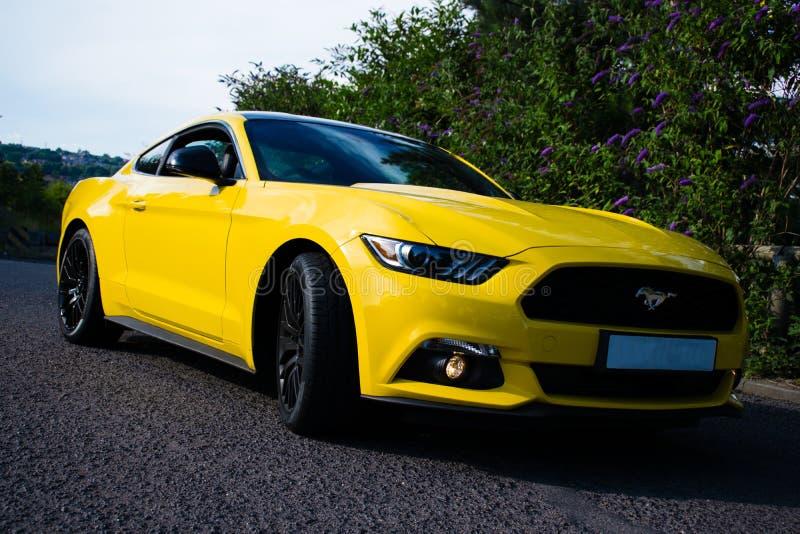 2017 Ford mustang - Potrójny kolor żółty zdjęcia royalty free