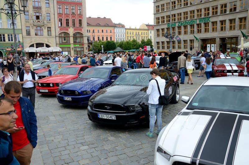 Ford Mustang Race royaltyfri bild