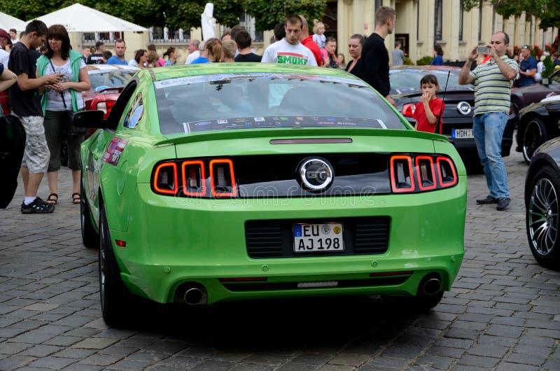 Ford Mustang Race royaltyfri fotografi