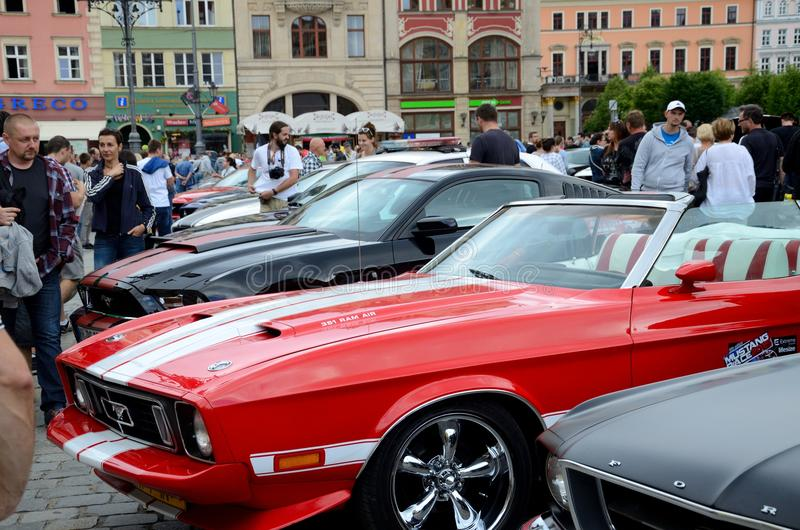 Ford Mustang Race fotografering för bildbyråer