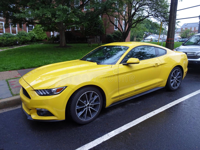Ford Mustang on a Rainy Day royalty free stock photo