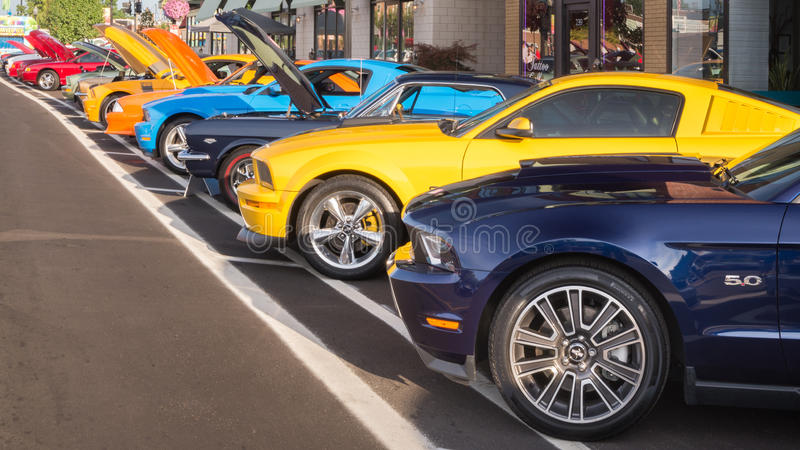 Ford Mustangs, Woodward Dream Cruise, MI. FERNDALE, MI/USA - AUGUST 15, 2015: 14 Ford Mustang cars at Mustang Alley, part of the Woodward Dream Cruise. Woodward royalty free stock photos