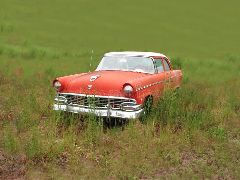 Ford oxidado velho em um campo fotos de stock royalty free