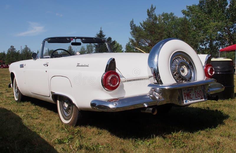 Ford Thunderbird Convertible branco clássico restaurado fotografia de stock royalty free