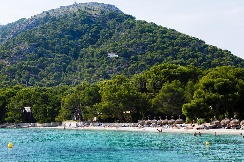 In the foreground is the beach and immediately begins the pine forest. View of a yacht on a large mountain; in the foreground is the beach and immediately begins royalty free stock photography