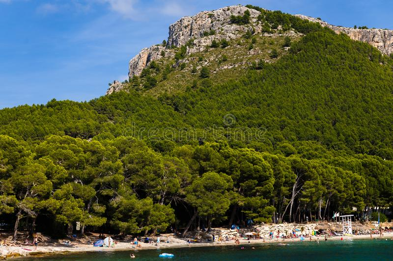 In the foreground is the beach and immediately begins the pine forest. View of a yacht on a large mountain; in the foreground is the beach and immediately begins stock photos