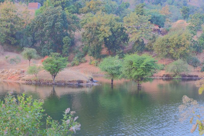 Nature in forest, mahi back water, banswara, rajasthan, India. Foreground corner green tree, blue water of mahi river, mountain and green tree in background royalty free stock photo
