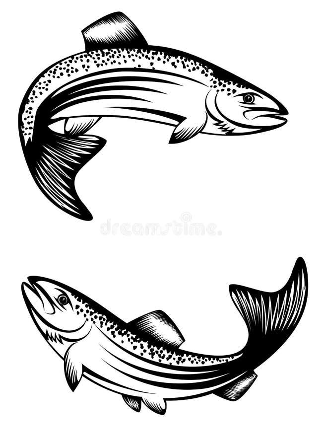 Forel vector illustratie
