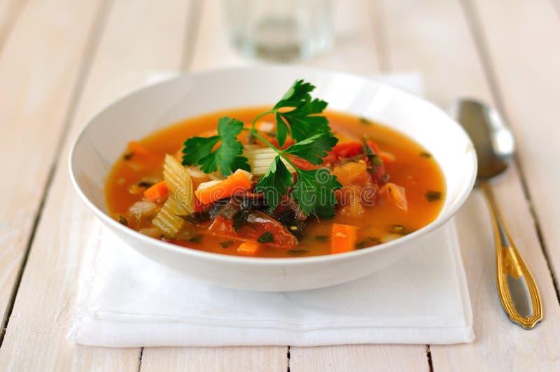 Forell, tomat och Chili Soup arkivfoton