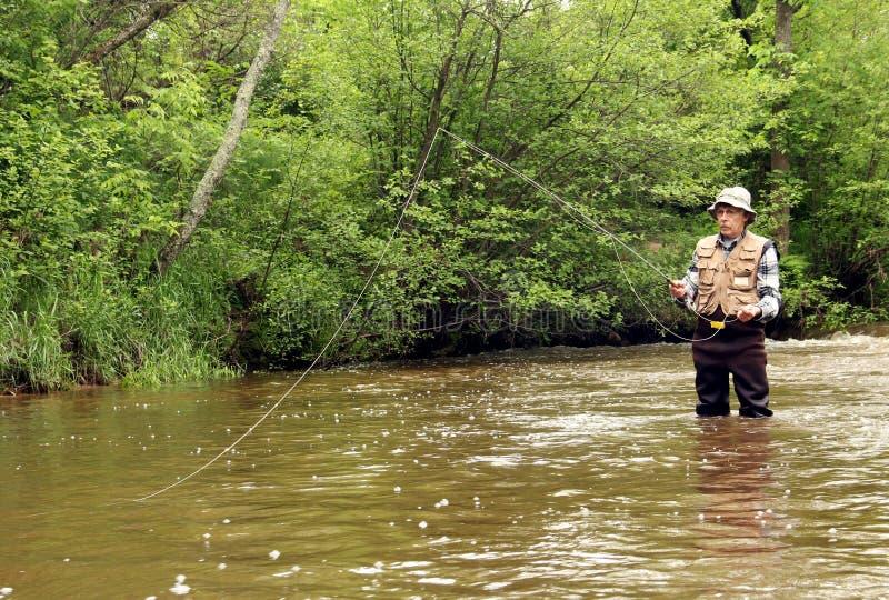 Forelle, die einen Wisconsin-Strom fischt lizenzfreie stockfotos