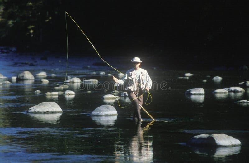 Forellen-Fischen in Housatonic-Fluss, szenischer Weg 7, CT stockbild