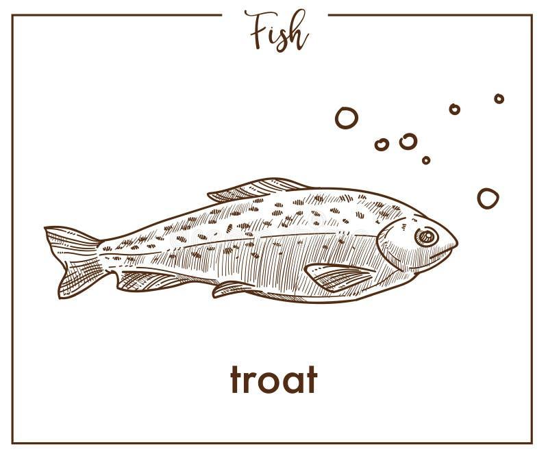 Forellen skissar fiskvektorsymbolen av laxen vektor illustrationer