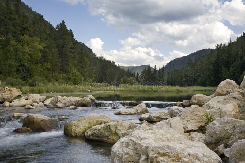 Forellenstrom im Black Hills von South Dakota lizenzfreie stockbilder