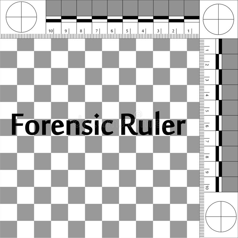 Forensic Ruler CSI. CSI Forensic Ruler, ruler forensic mobile lab for photographing evidence at the crime scene, vector true scale stock illustration