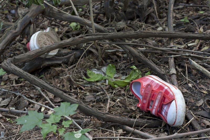 Forensics- och utredningungeskor i skogen royaltyfri foto