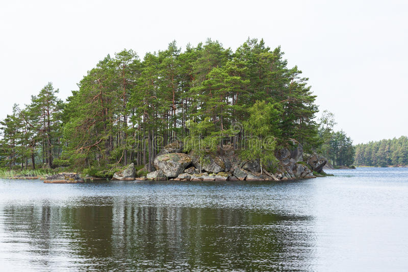Forest湖和一个海岛有峭壁的 免版税库存照片