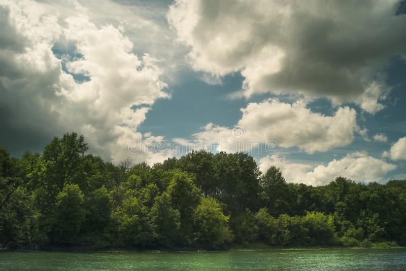 Forest above the river under the summer cloudy sky.  royalty free stock images