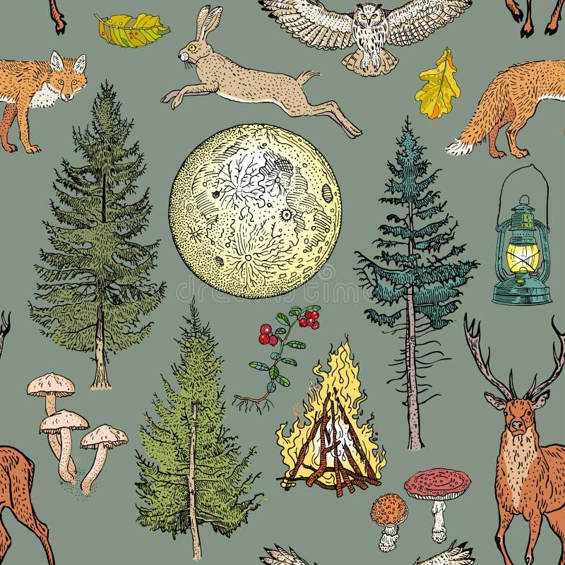 Free Forest Adventure Magic Seamless Pattern: Bonfire, Camping Lamp, Full Moon, Spruce, Fir Tree, Mushrooms, Fox, Hare, Deer Stock Photography - 201344272