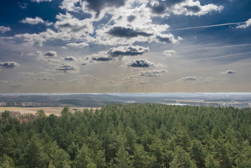 Forest from the air royalty free stock photography