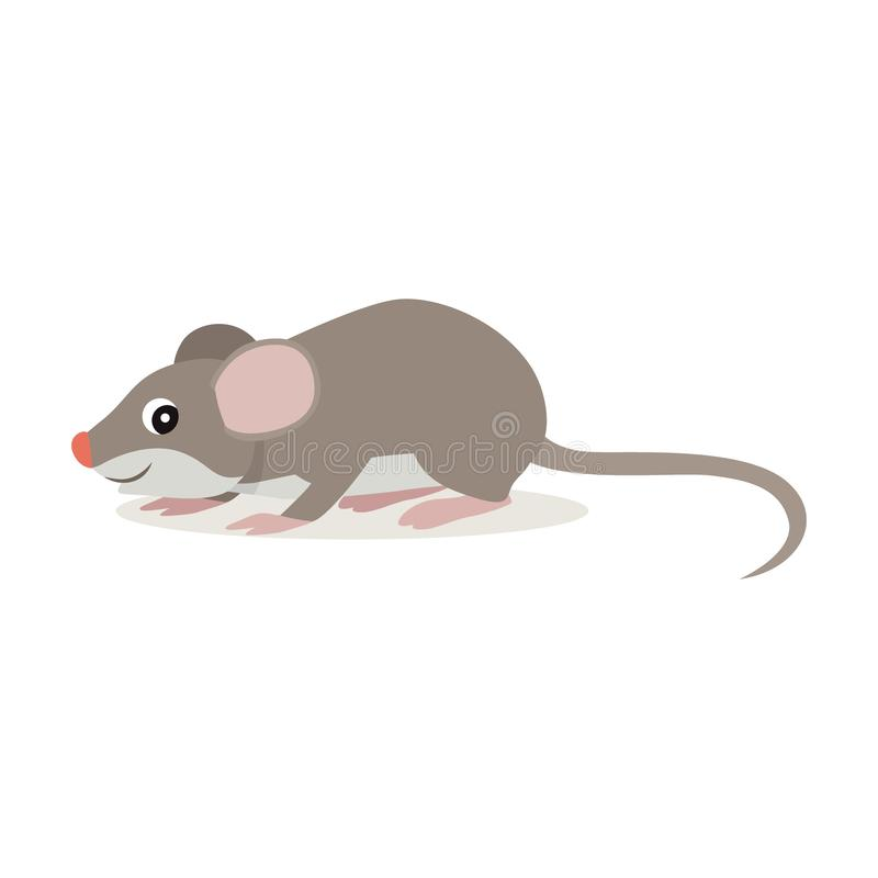 Forest animal, cute small gray mouse icon isolated on white background. Funny rat, vector illustration vector illustration